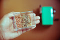 Hand holding scrap sawdust from a pencil sharpener Royalty Free Stock Photo