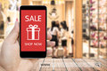 Hand holding smart phone with sale paynow on screen and www. search bar. Royalty Free Stock Photo