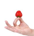 Hand holding a strawberry white background Stock Image