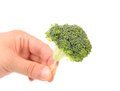 Hand holds broccoli floret on a toothpick close up Stock Photo
