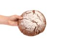 Hand holds brown round bread white background Royalty Free Stock Photos
