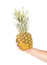 Hand holds of the ripe pineapple close up white background Royalty Free Stock Photos