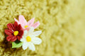 Hand made flowers. Royalty Free Stock Photo