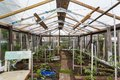 It is hand made greenhouse Royalty Free Stock Photo