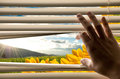 Hand opening blinds with beautiful landscape view Stock Photo