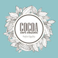 Hand painted cocoa wreath botany illustration. Decorative doodle of healthy nutrient food.