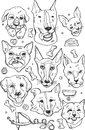 Hand painted set of Doodle icons. Different breeds of dogs bulldog ,Beagle ,Border Collie,Golden Retriever,Bull Terrier and other
