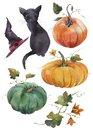 Hand painted watercolor illustrations. Set of Halloween elements and objects.