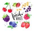 Hand painted watercolor set of berries