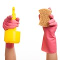Hand in a pink glove holding spray and sponge bottle isolated over white background Stock Photo