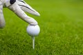 Hand placing golf ball on tee over golf course with green grass see my other works in portfolio Royalty Free Stock Photo