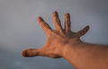 Hand reaching to sky. Royalty Free Stock Photo