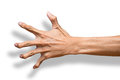 Hand scary claw male making a gesture isolated on a white background clipping path included Stock Images