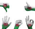 Hand set with the flag of wales a hands different gestures wrapped in Stock Image
