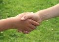 Hand shake Royalty Free Stock Photo