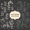 Hand sketched vintage floral elements for your design set of flowers and leaves vector illustration Stock Photos