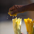Hand squeezing a yellow citrus over pieces of melon in cartagena colombia Stock Images