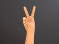 Hand with two fingers up in the peace or victory symbol. Also the sign for the letter V in sign language.Man or woman hand. Royalty Free Stock Photo