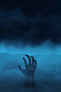 Hand of undead on blue scary picture zombie s background Stock Image