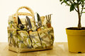 Handbag set gardening tools house plant container Stock Image
