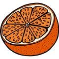 Handdrawn half ogange illustration Royalty Free Stock Photo