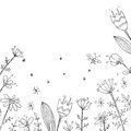 Handdrawn vector floral background. Simple doodle flowers. Black