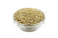 A handful of canary grass seed in a glass bowl Royalty Free Stock Photo