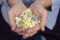 Handful Of Medicines Pills Royalty Free Stock Photo