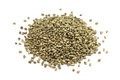 A handful of roasted hemp seed Royalty Free Stock Photo