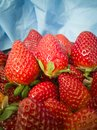 Handful of strawberries on blue background Royalty Free Stock Photo