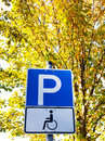 Handicapped Royalty Free Stock Photo