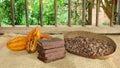 Handmade chocolate blocks and ripe cocoa fruits Royalty Free Stock Photo