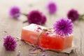 Handmade herbal soap Royalty Free Stock Photo