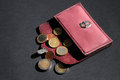 Handmade purse open with euro coins Stock Image