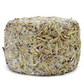 Handmade rosemary coated cheese from spain a on a white background Stock Images