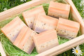 Handmade soap in wooden box as gift Royalty Free Stock Image
