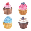Handmade watercolor illustration of cupcakes.