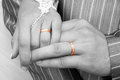 Hands of bride and groom with wedding rings Stock Images