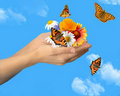 Hands with butterflies Stock Image