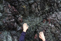 Hands clinging to rocks by the fingertips and climbing up a rough granite rock face Royalty Free Stock Photo