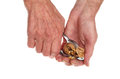 Hands cracking walnut closeup of a pair of a with nut crackers isolated against white Stock Photography