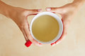Hands with cup of tea a woman a chamomile Royalty Free Stock Image
