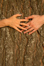 Hands  female  love  friendship Royalty Free Stock Photo