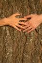 Hands  female  love  friendship Royalty Free Stock Photo