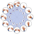 Hands figuring numbers of clock hand signs counting up from one to twelve representing analog Stock Photo