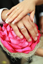 The hands of the groom on wedding bouquet red roses Royalty Free Stock Photography
