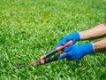 Hands holding the gardening scissors on green grass. Gardening c
