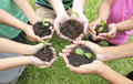 Hands holding sapling in soil surface Royalty Free Stock Photo