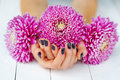 Hands with manicure and pink flower woman cupped wish fashion dark lying down holding bright flowers Royalty Free Stock Photos