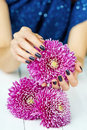 Hands with manicure and pink flower woman stylish dark holding bright daisy flowers Stock Images